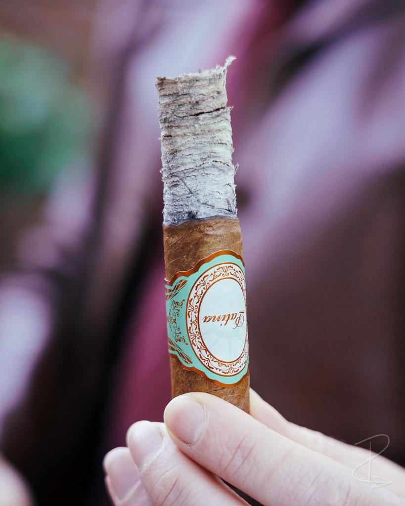 The perfectly constructed ash on the Patina Habano Copper Corona Gorda Cigar