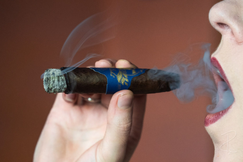 The light and smooth ribbons of smoke from the Nordlicht Short Torpedo Maduro